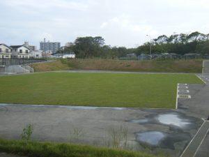トース土工法天然芝下地